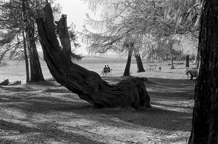 """Høstlufta er så klar og fin! Storhamarstranda (1969). Oktoberbildet i 2015-kalenderen """"Det var slik det var"""". Foto: Morten Løberg."""